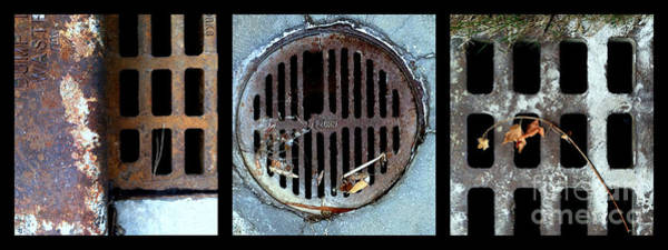 Photograph - Sew Sewer Sewest by Marlene Burns