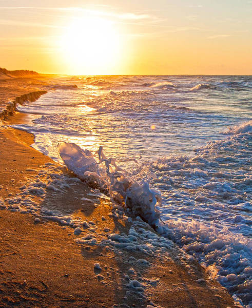 North Atlantic Photograph - Shackleford Banks Sunrise by Betsy Knapp