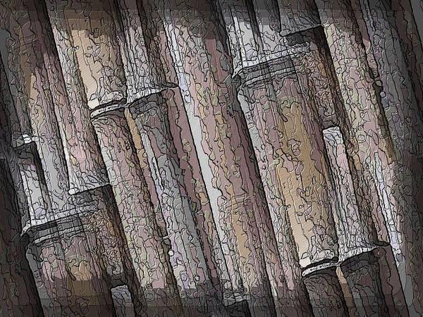 Bamboo Digital Art - Shades Of Bamboo by Tim Allen