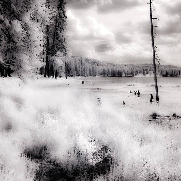 Photograph - Shepard Lake In Infrared 3 by Lee Santa