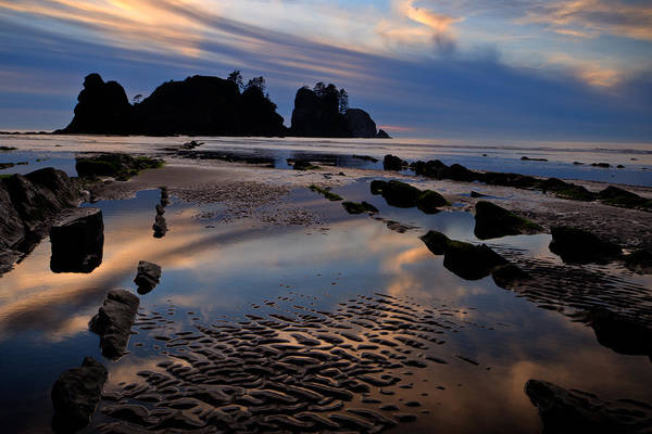 Wall Art - Photograph - Shi Shi Beach At Sunset by Alvin Kroon
