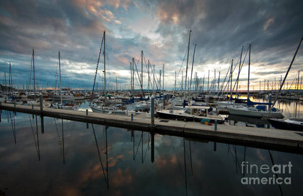 Puget Sound Photograph - Shilshole Marina Tranquility by Mike Reid