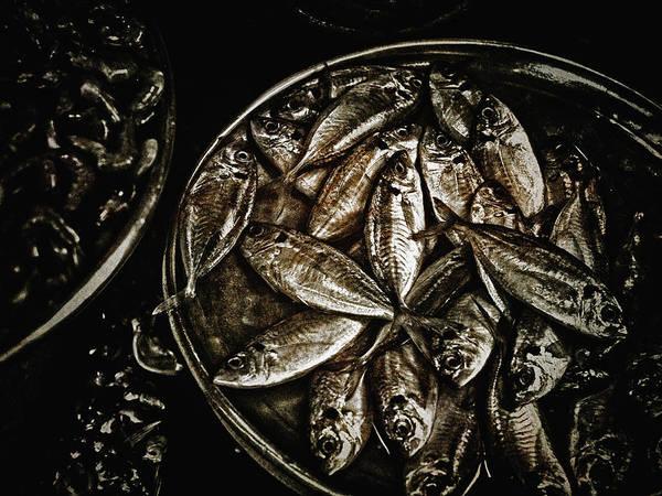 Wall Art - Photograph - Fresh Fish At The Market by Skip Nall
