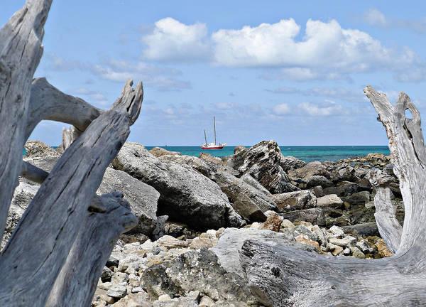 Photograph - Ship Ahoy by Richard Reeve