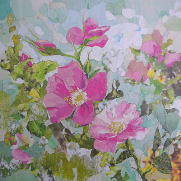 Shrub Mixed Media - Shrub Roses by Robin Birrell