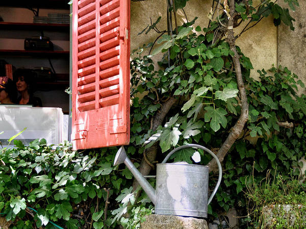 Sandra Anderson Wall Art - Photograph - Shutters And Watering Can by Sandra Anderson