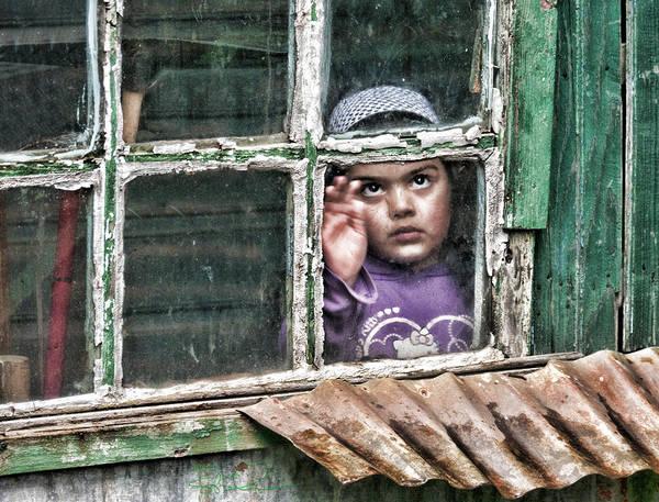 Photograph - Shy Curiosity by S Paul Sahm