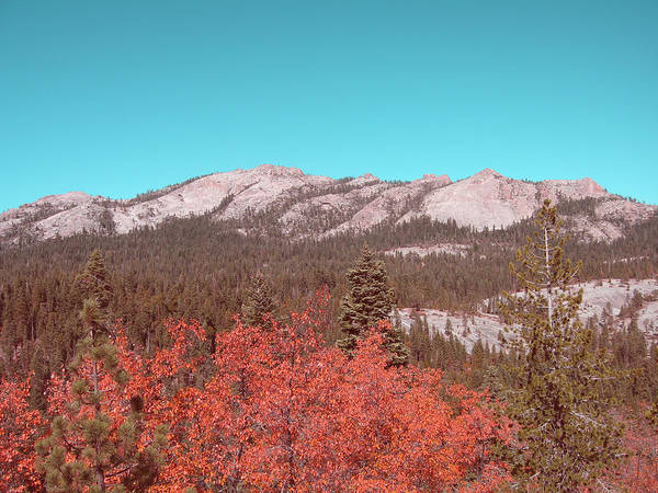 Wall Art - Photograph - Sierra Nevada Mountain by Naxart Studio