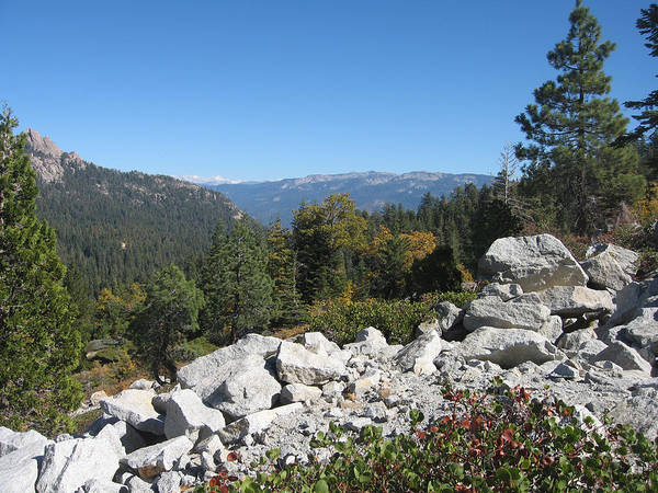 Beautiful Park Photograph - Sierra Nevada Mountains 1 by Naxart Studio