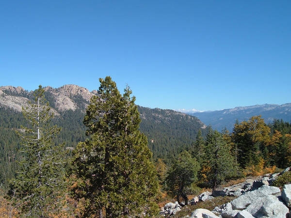 Sierra Nevada Photograph - Sierra Nevada Mountains 2 by Naxart Studio