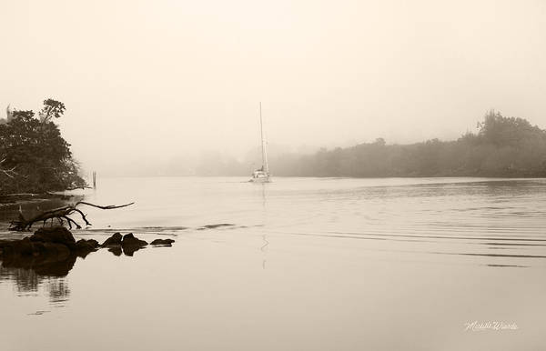 Photograph - Silent Passage by Michelle Constantine