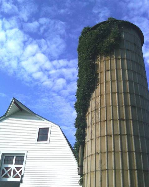 Smallholding Photograph - Silo Ivey by Christopher Kerby