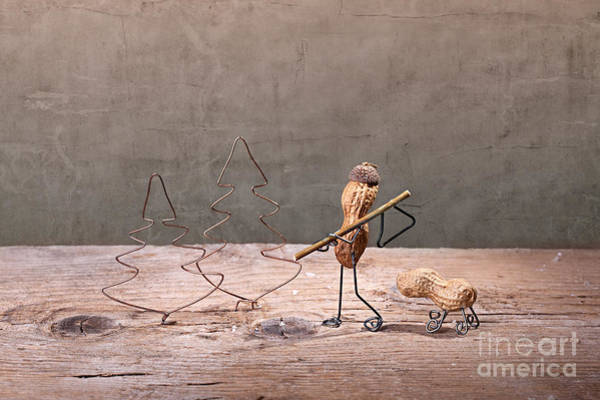 Axe Wall Art - Photograph - Simple Things - Christmas 01 by Nailia Schwarz
