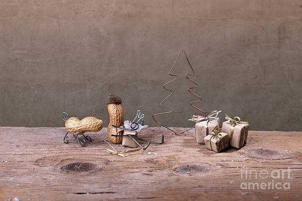 Gift Wrap Photograph - Simple Things - Christmas 06 by Nailia Schwarz