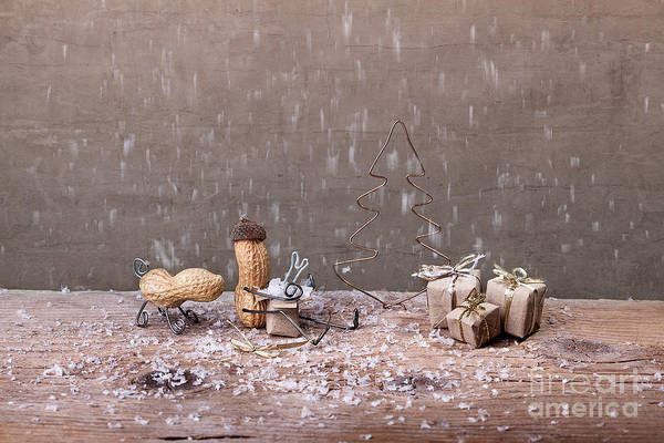 Wall Art - Photograph - Simple Things - Christmas 07 by Nailia Schwarz