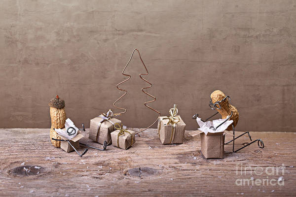 Figurine Wall Art - Photograph - Simple Things - Christmas 08 by Nailia Schwarz