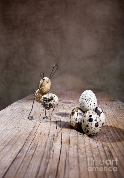Egg Photograph - Simple Things Easter 01 by Nailia Schwarz