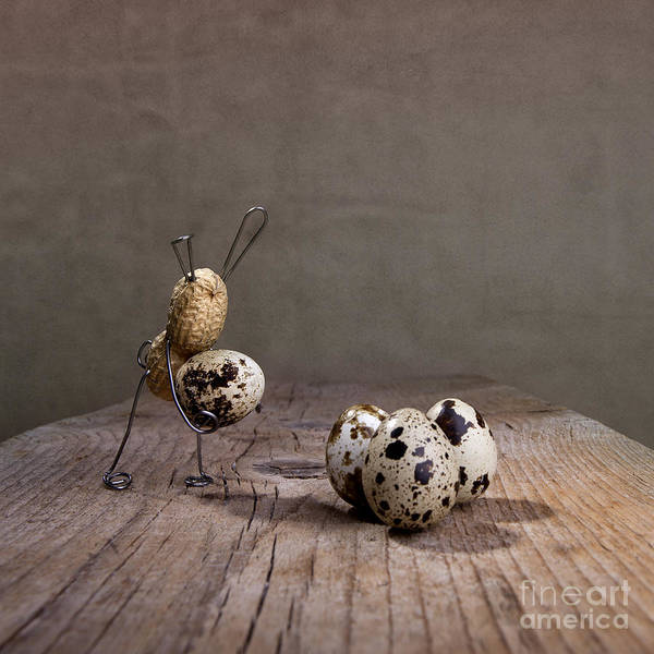 Bizarre Wall Art - Photograph - Simple Things Easter 03 by Nailia Schwarz