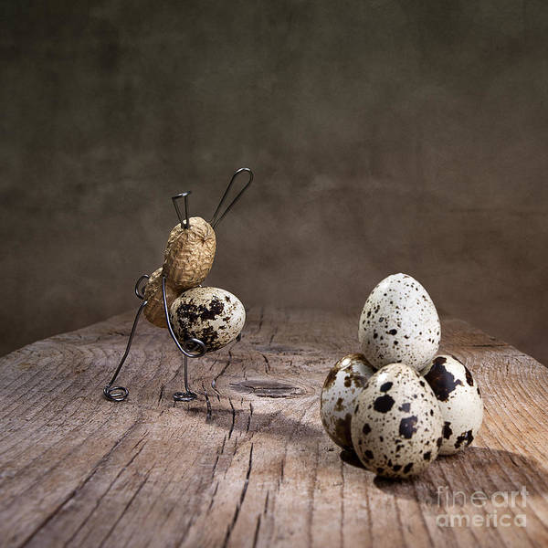 Figurine Wall Art - Photograph - Simple Things Easter 07 by Nailia Schwarz