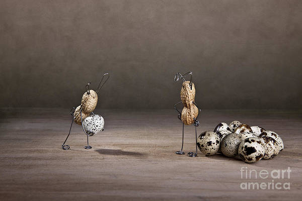 Egg Photograph - Simple Things Easter 09 by Nailia Schwarz