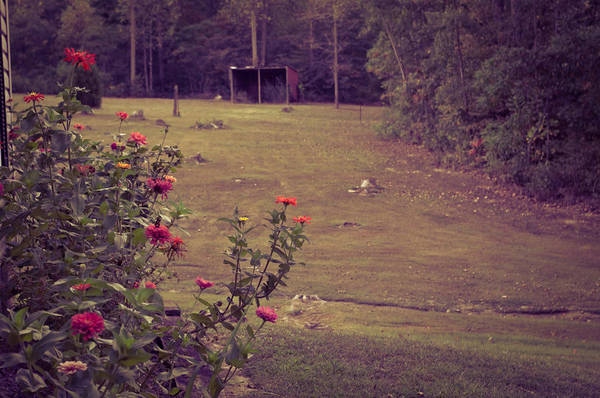 Wall Art - Photograph - Simply Summer by Melissa  Riggs
