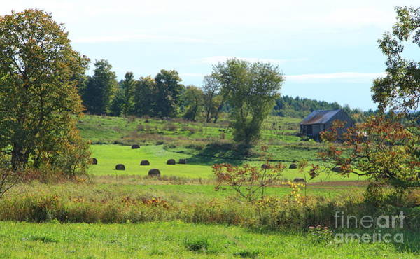 Photograph - Simply Vermont by Deborah Benoit
