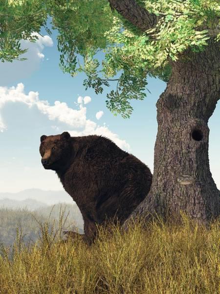 Digital Art - Sitting Bear by Daniel Eskridge