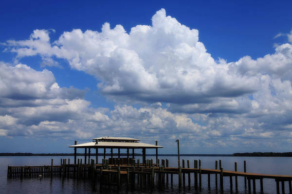 Wall Art - Photograph - Sitting On The Dock by Toni Hopper