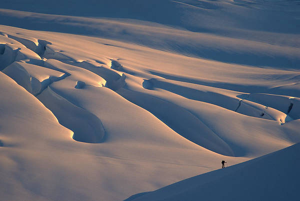 Alpen Glow Wall Art - Photograph - Skier And Crevasse Patterns At Sunset by Colin Monteath