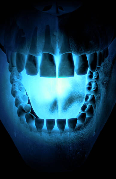 Vertical Digital Art - Skull, Teeth And Tongue by MedicalRF.com