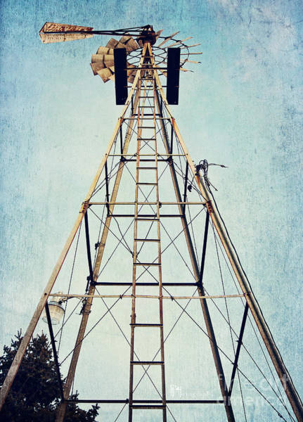 Photograph - Sky High by Pam  Holdsworth