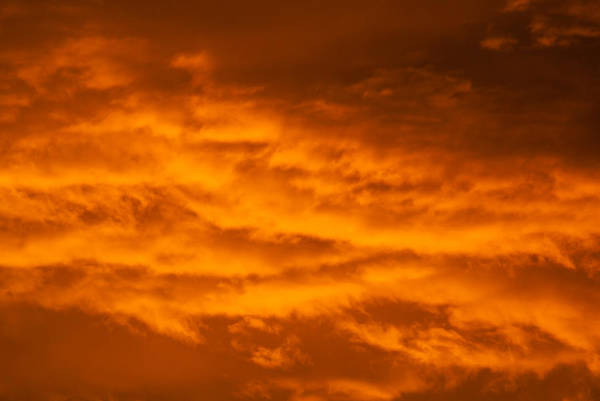 Photograph - Sky Of Fire by Colleen Coccia