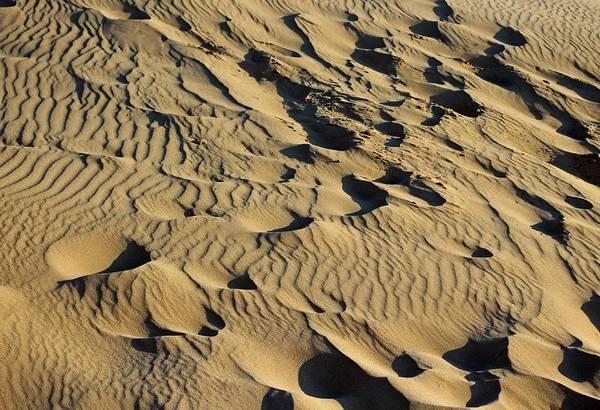 National Lakeshore Wall Art - Photograph - Sleeping Bear Dunes Sand by Twenty Two North Photography
