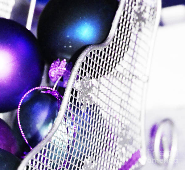 Photograph - Sleigh Bells by Traci Cottingham