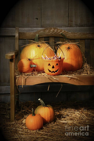 Wall Art - Photograph - Small And Big Pumpkins On An Old Bench  by Sandra Cunningham