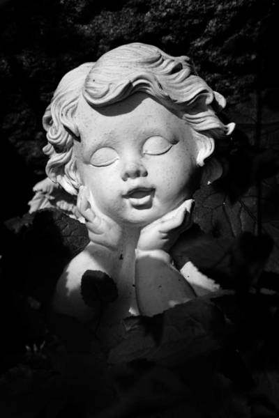 Photograph - Small Angel In The Sun by Marc Huebner