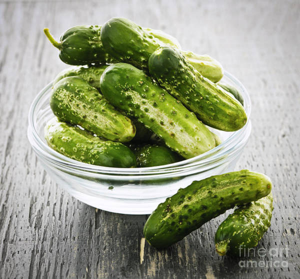 Wall Art - Photograph - Small Cucumbers In Bowl by Elena Elisseeva