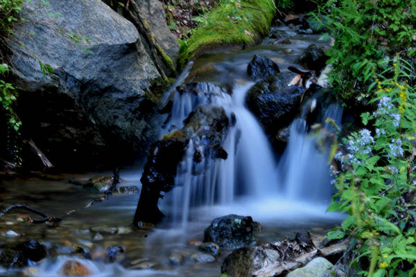 Photograph - Small Falls by Peter DeFina