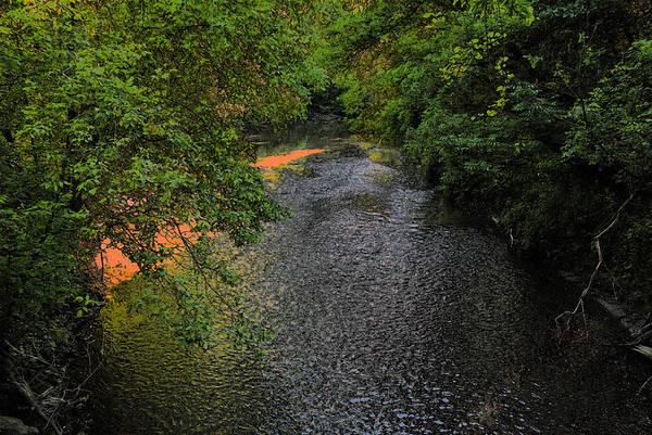 Photograph - Small River by Dragan Kudjerski