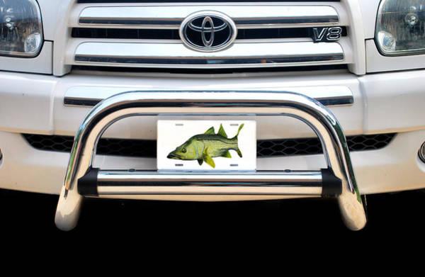 Digital Art - Snook Plate by Steve Ozment