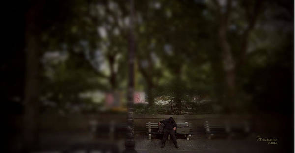 Photograph - Snoozing On Central Park West by Ericamaxine Price