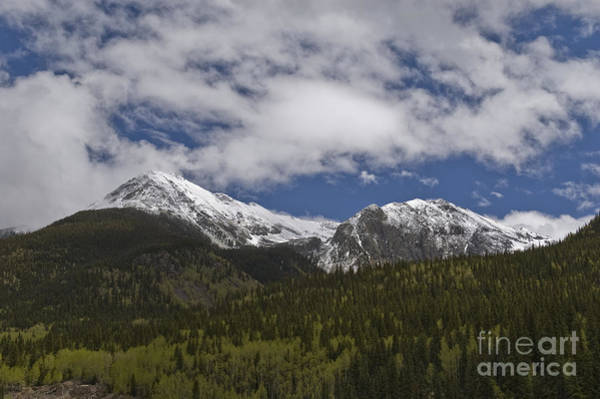 Photograph - Snow Capped San Juans by Tim Mulina