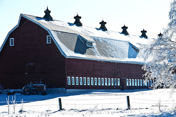 Photograph - Snow Covered Red Barn by Edward Peterson