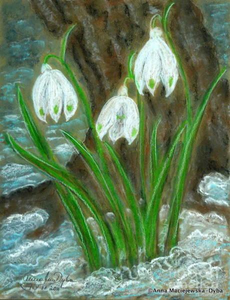 Snowdrop Painting - Snowdrops by Anna Folkartanna Maciejewska-Dyba