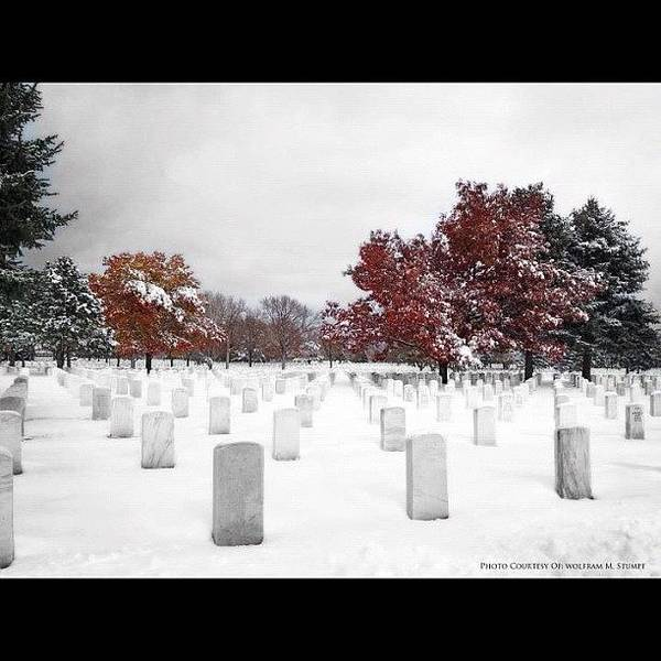 Military Photograph - Snowy National Cemetery by Wolf Stumpf