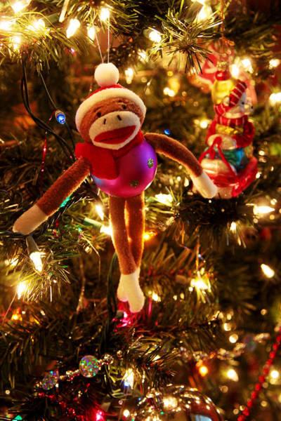 Sock Monkey Photograph - Sock Monkey Is In The Season by Toni Hopper