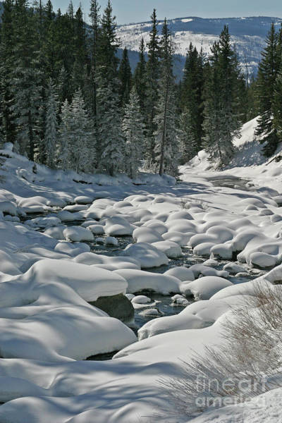 Photograph - Soda Butte Snow Pillows by Katie LaSalle-Lowery