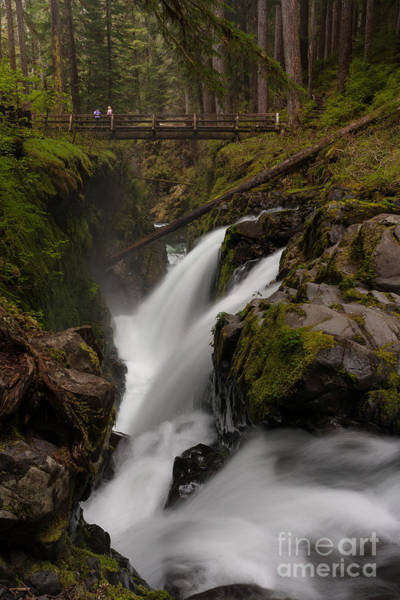 Olympics Photograph - Sol Duc Flow by Mike Reid