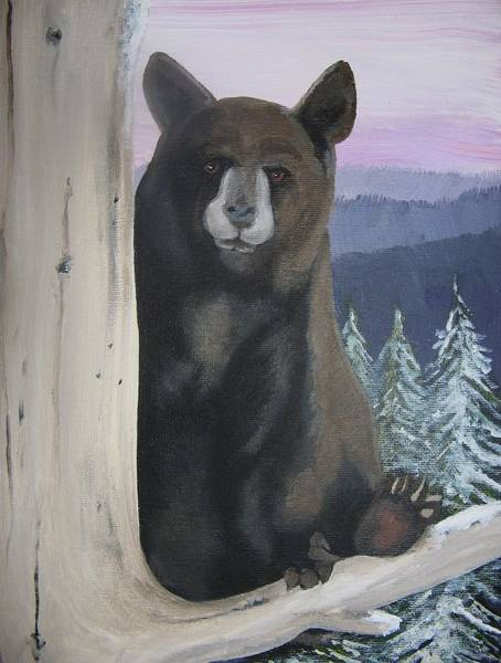 11x14 Painting - Sold-up A Tree. A Black Bear by Charlie Mumah