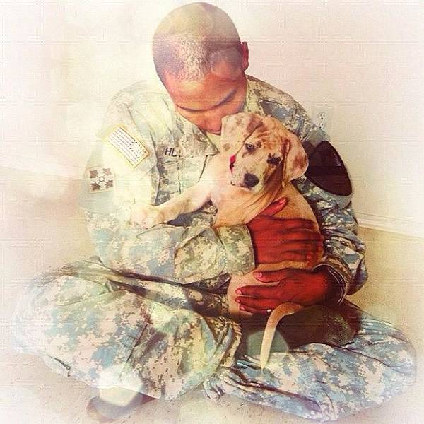 Military Photograph - Soldier And His Dog by Samantha Huynh